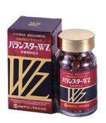 Wz120_5
